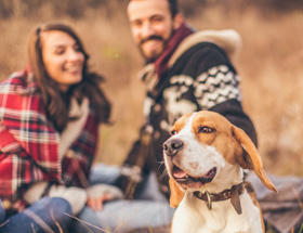 dog sits in front of happy smiling couple